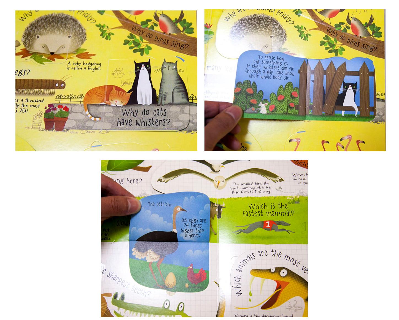 Every Need Want Day Kumon Creative Doodling Workbooks 2 Books Series C Book 3