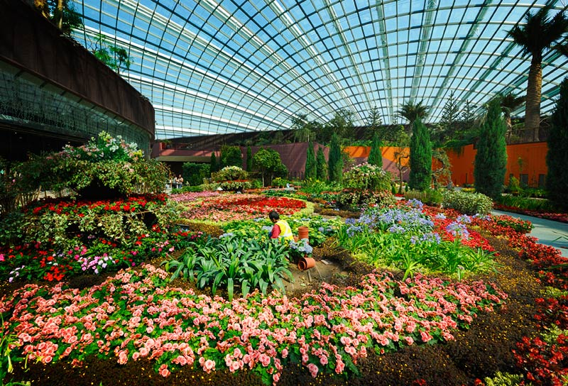 gardens by the bay flower dome cloud forest ticket