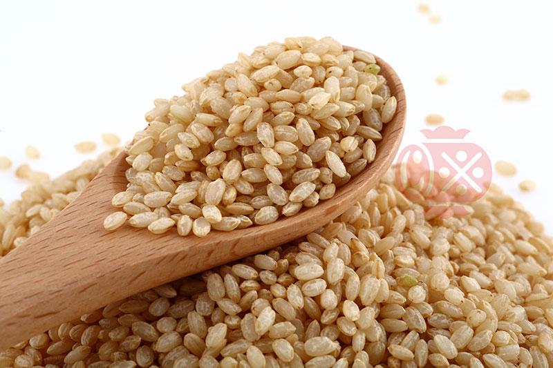 how to cook koshihikari rice