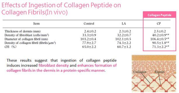 collagen, collagen jello