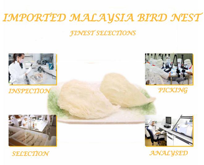 beauty, anti-aging, Collagen Bird Nest