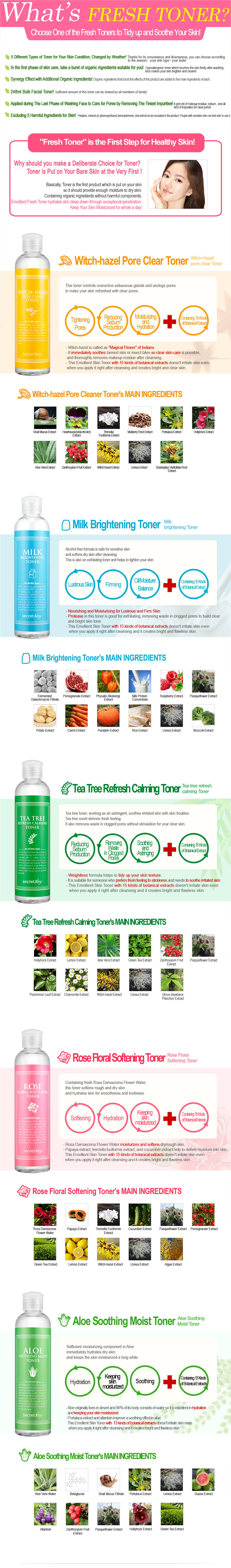 Secret Key Official Fresh Toner 248ml Aloe Tea Tree Witch Hazel Milk Ph 543 Teetree 527 Rose 539 520