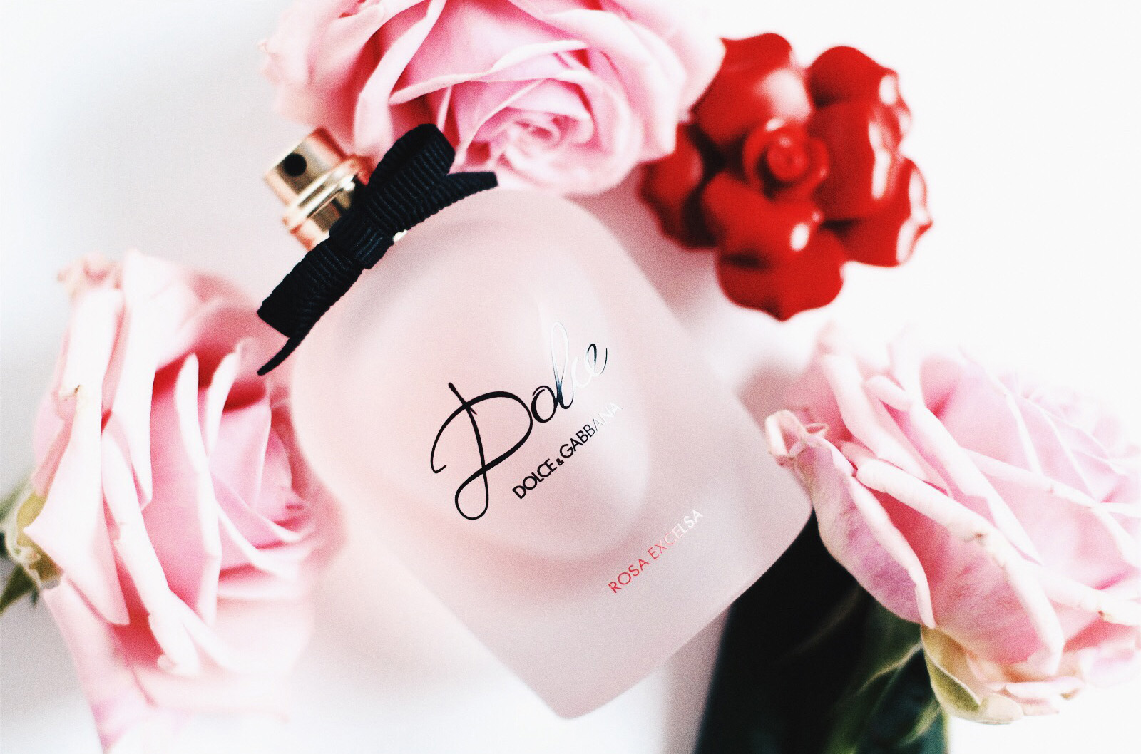 042baf47 The Fresh New Scent of 2016 by Dolce & Gabbana. Rosey, addictive and  seductive. This fragrance would truly captivate and immerse you with its  scent.